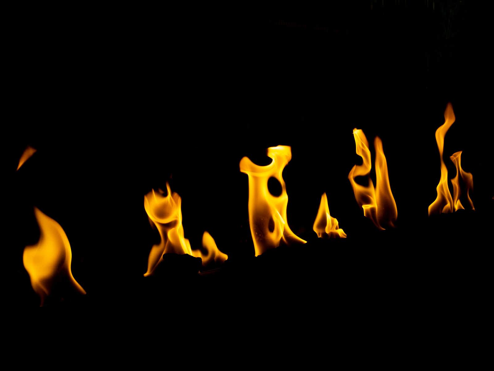 「炎(ほのお)」の写真