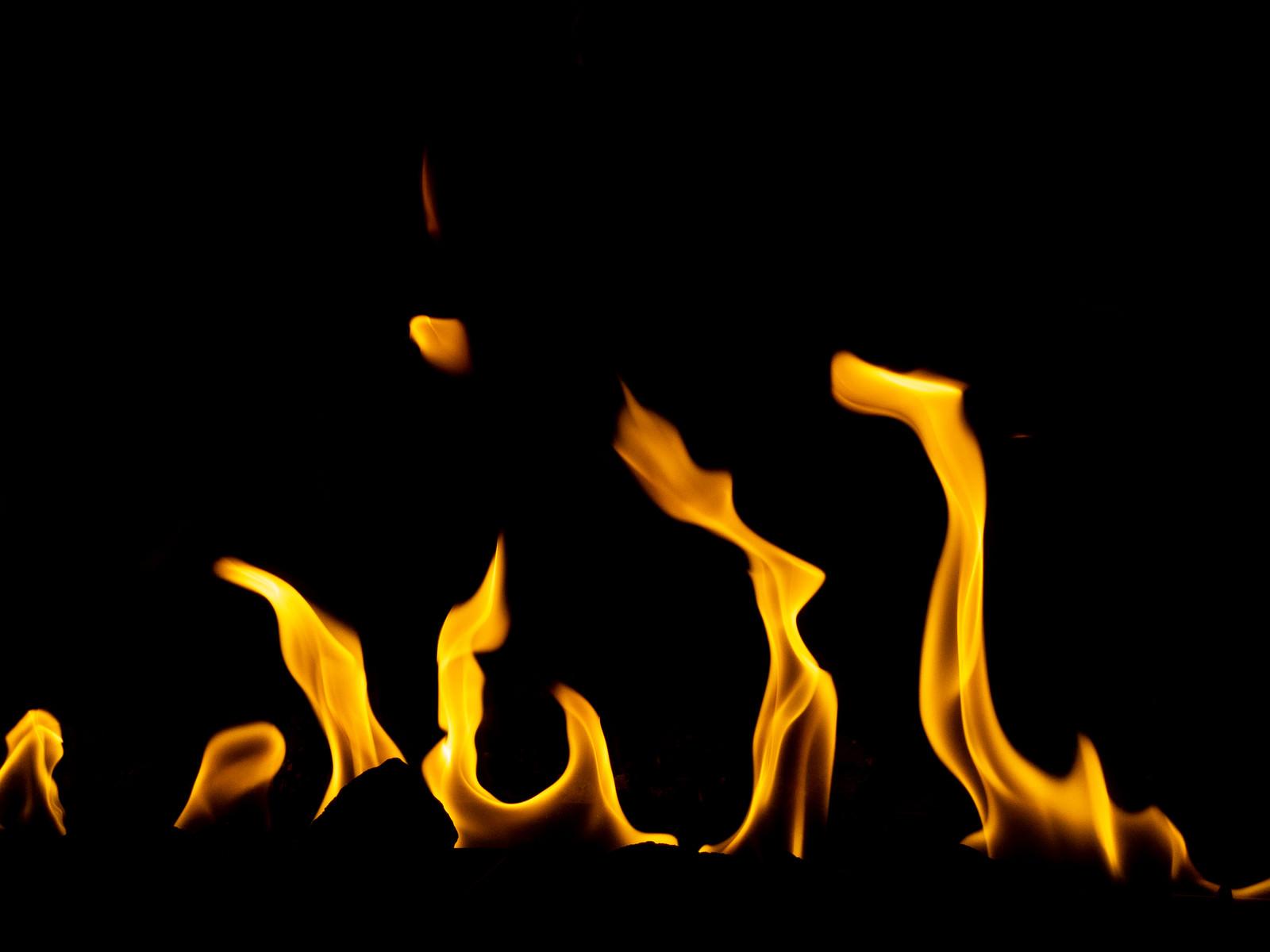 「メラメラ燃え続ける火」の写真