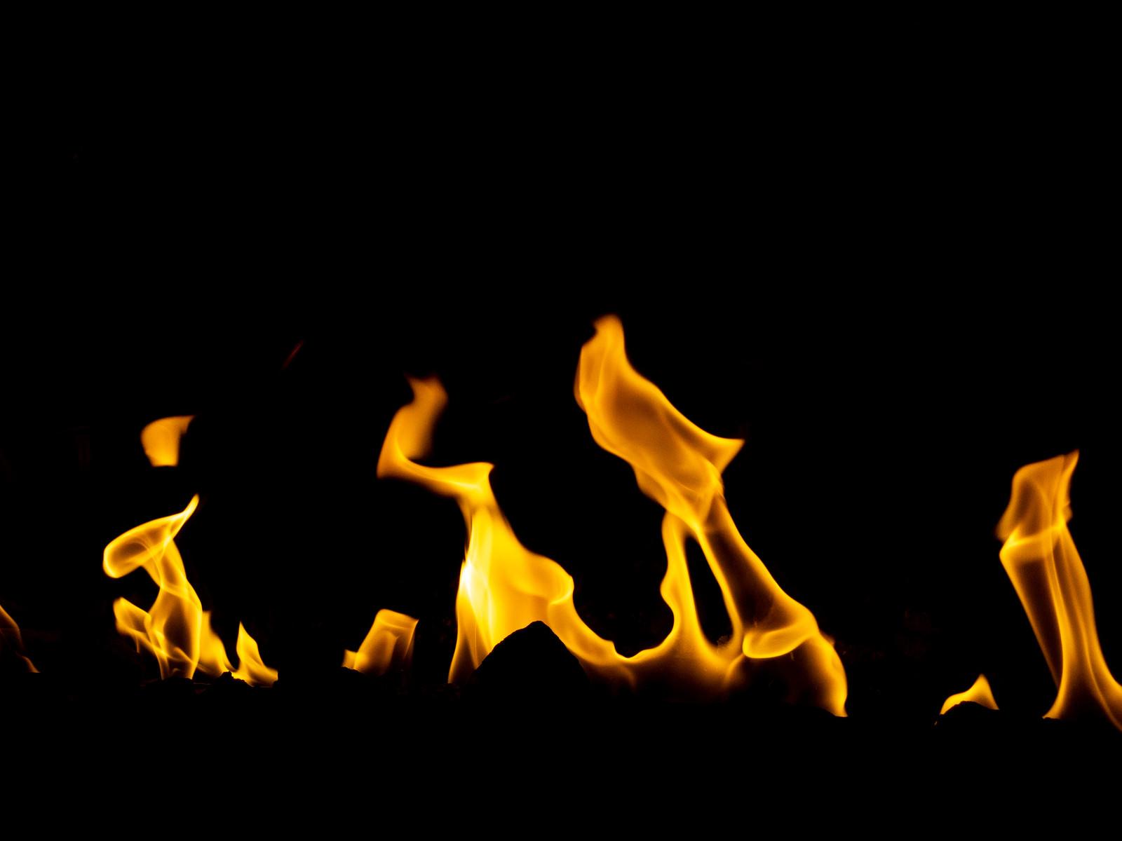 「火災」の写真