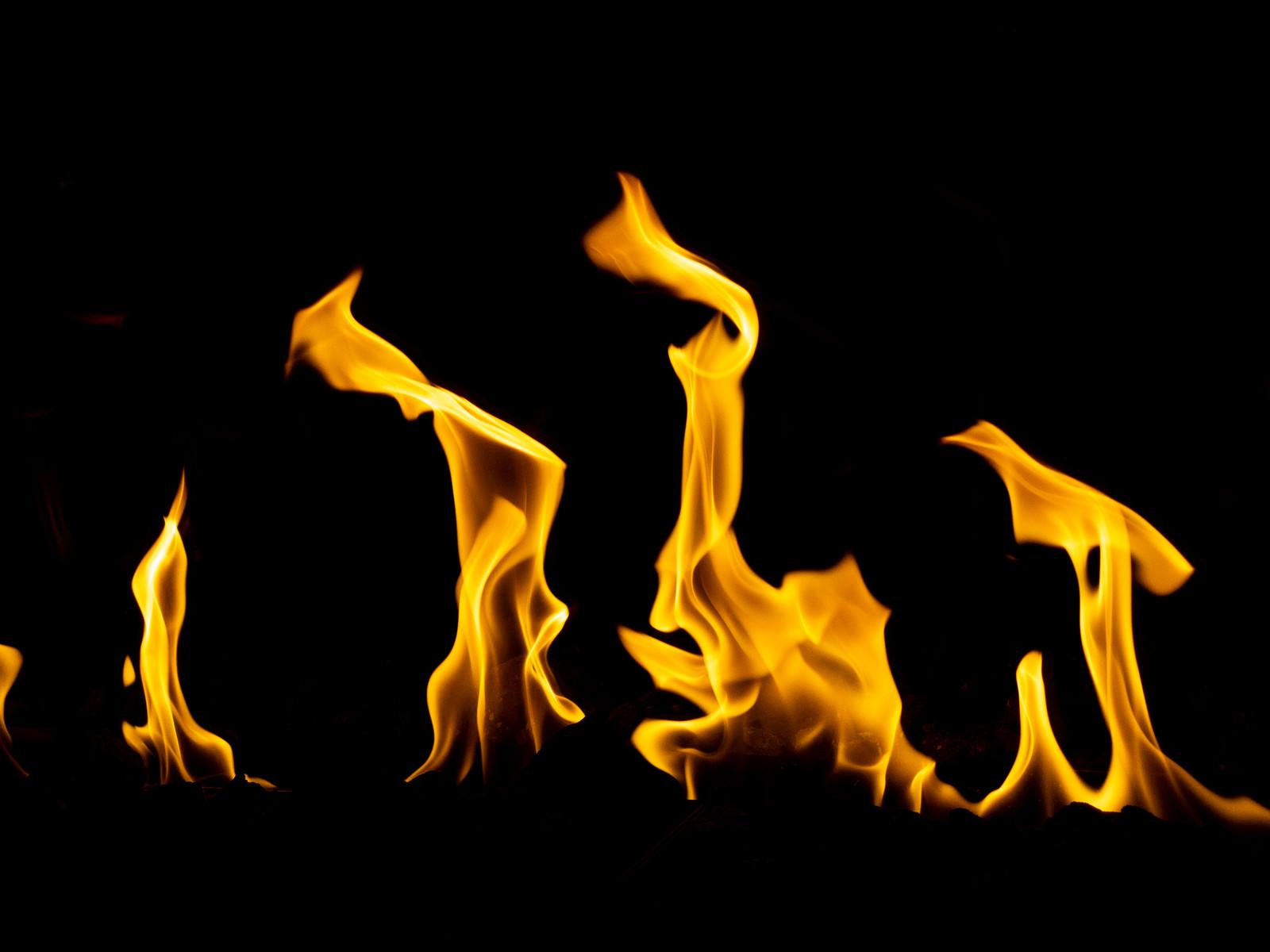 「よく燃える」の写真