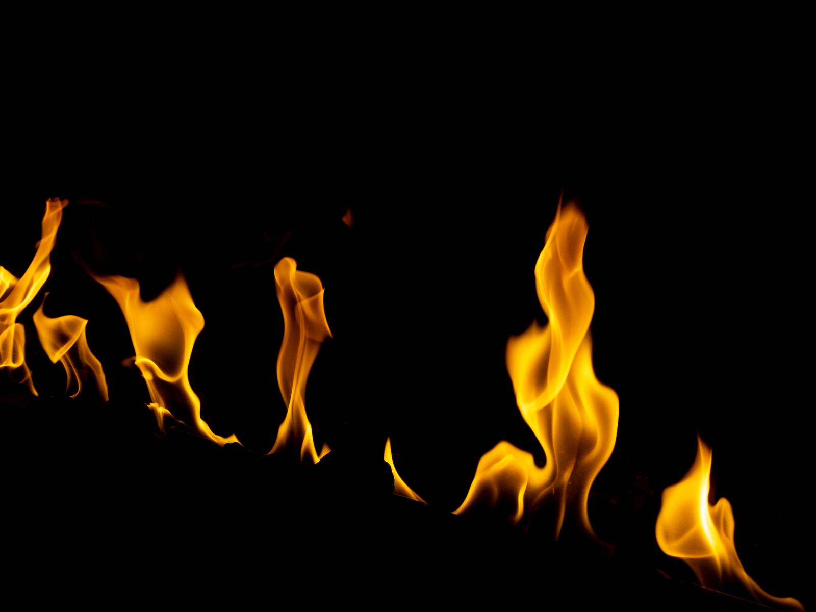 「メラメラの炎」の写真