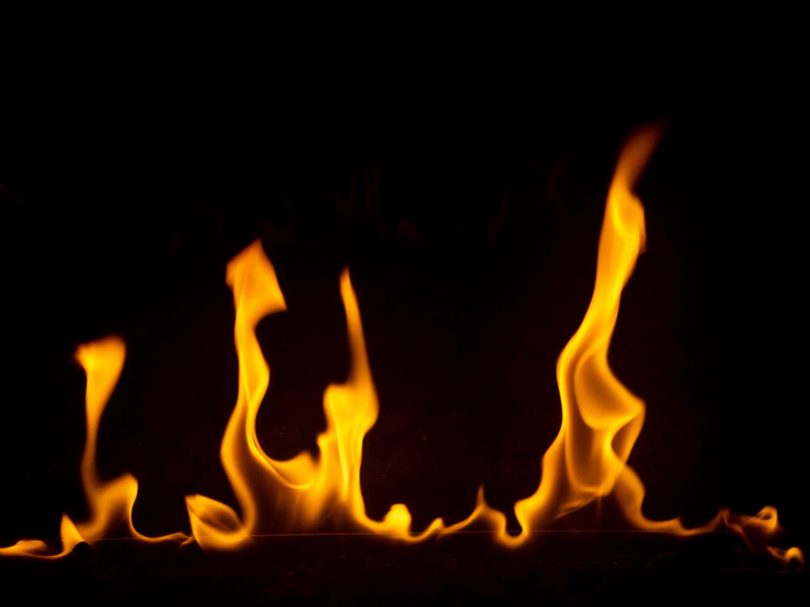 「勢いよく炎を燃え上がる」の写真