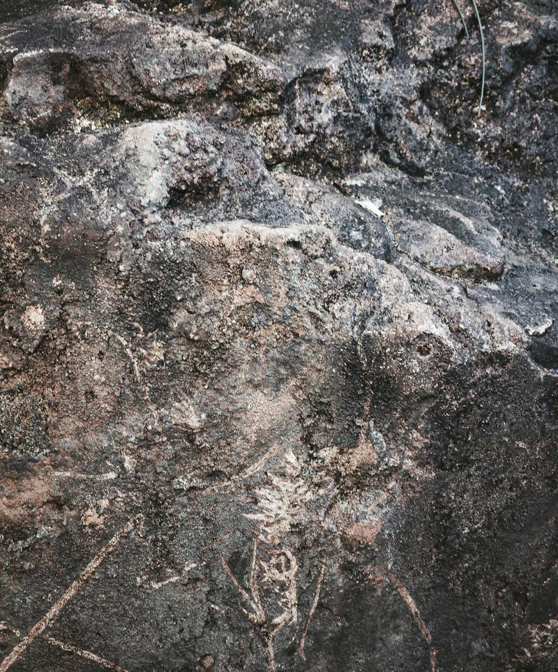 「巨石の角(テクスチャ)」の写真
