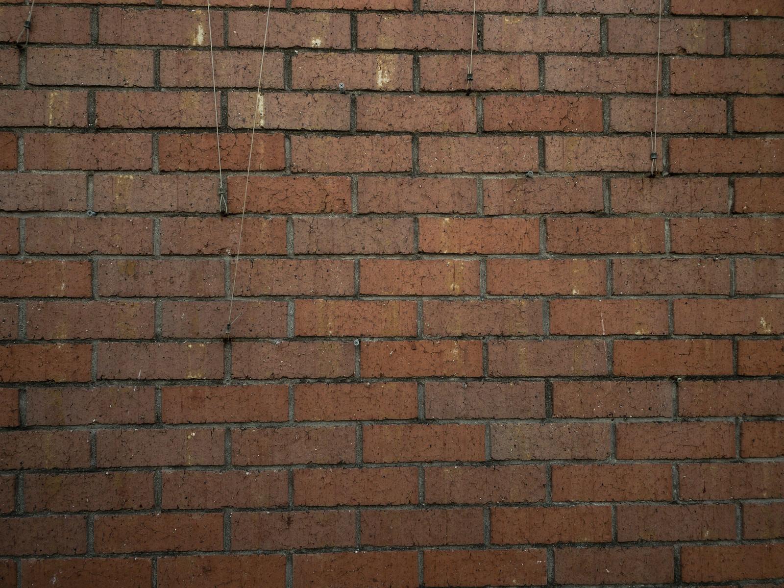 「レンガブロックの壁(テクスチャ)」の写真