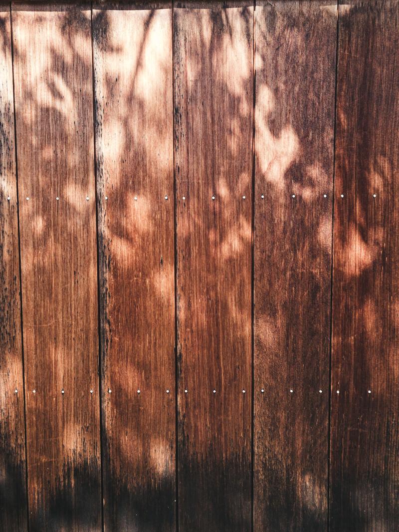 「木漏れ日の影と木目調の壁(テクスチャ)」の写真