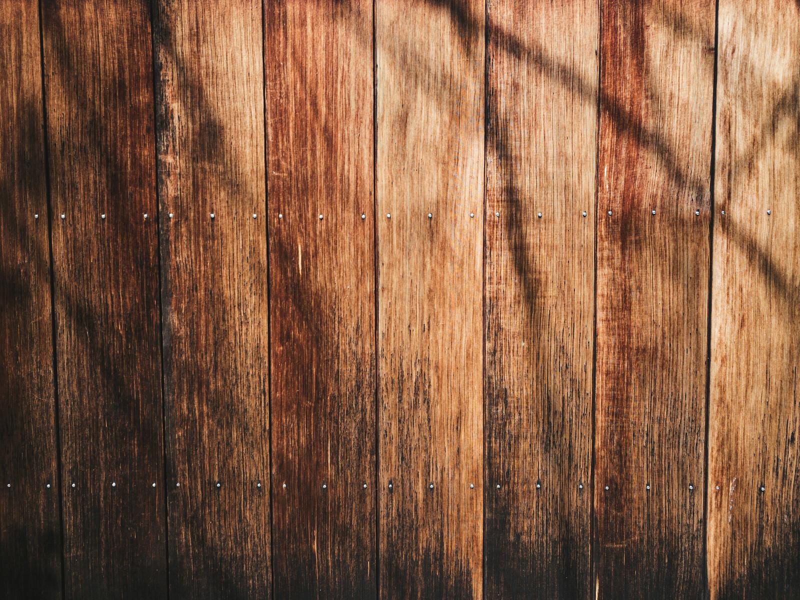 「枝の影が映り込む板壁(テクスチャ)」の写真