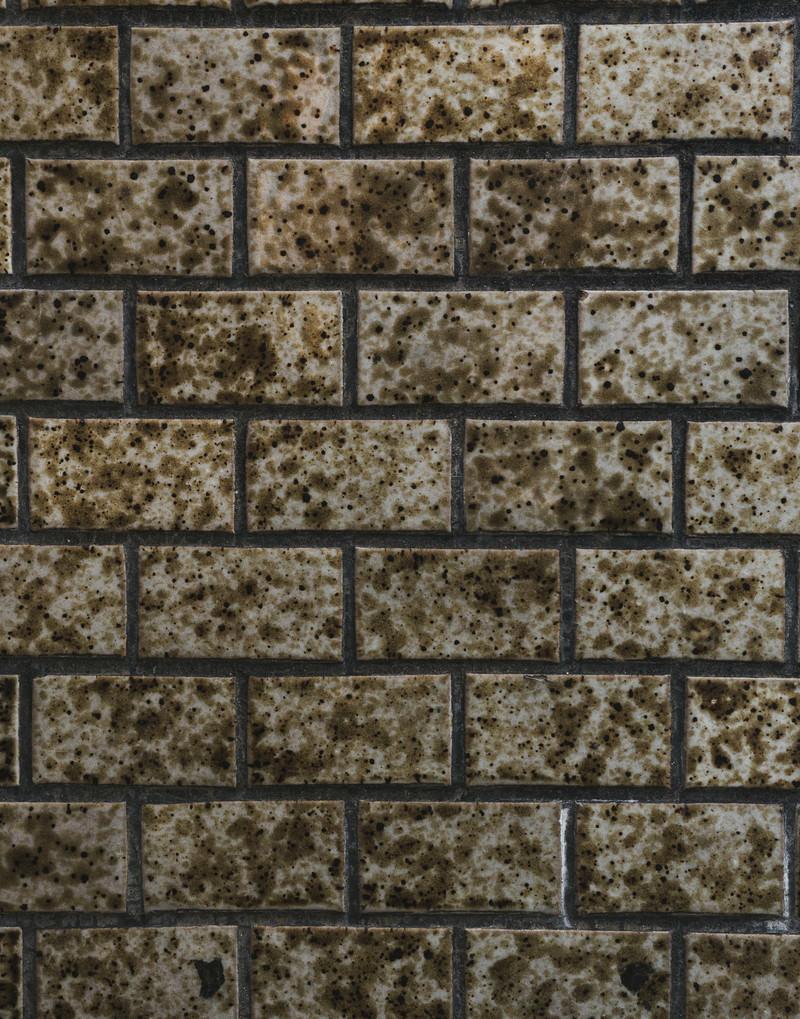 「タイル壁一面の汚れとカビ(テクスチャ)」の写真