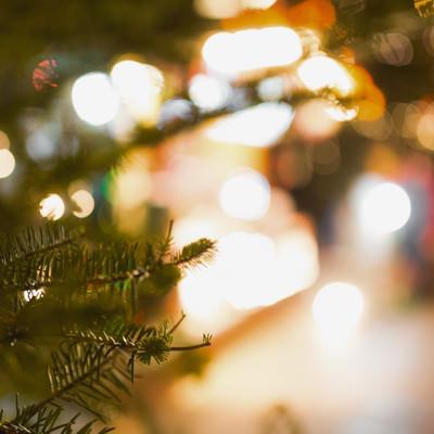 「クリスマスツリーと光るライト」の写真素材