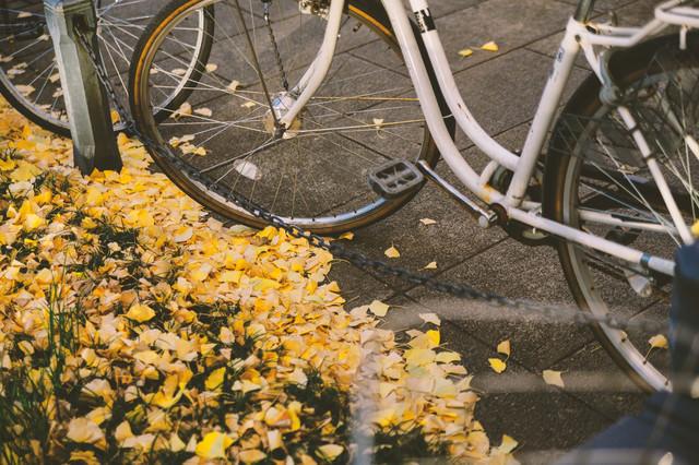 放置自転車と銀杏の葉の写真