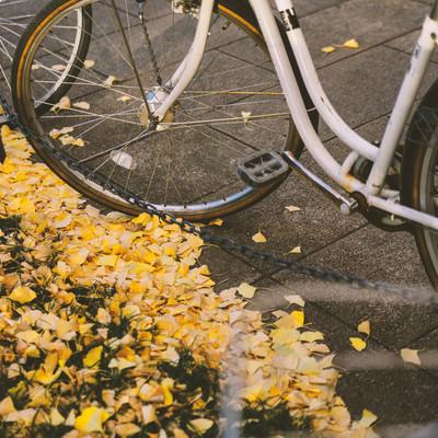 「放置自転車と銀杏の葉」の写真素材
