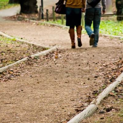 「秋道を歩く恋人」の写真素材