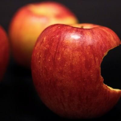 「かじられ置かれた林檎」の写真素材