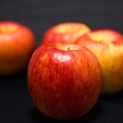 「並べられたりんご」の写真素材