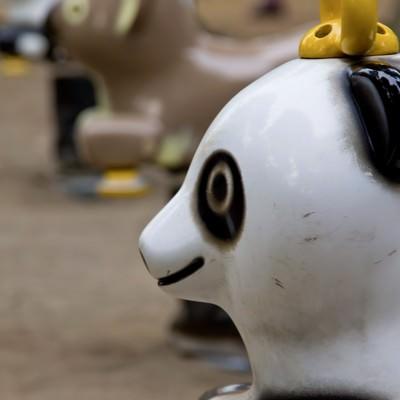 「パンダの遊具」の写真素材