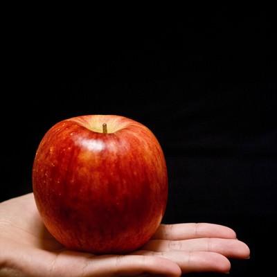 「手に乗せたりんご」の写真素材