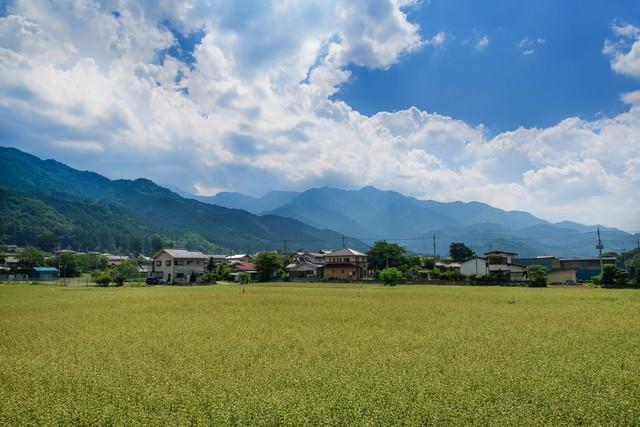 田んぼと田舎の風景の写真