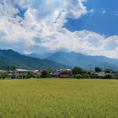 「田んぼと田舎の風景」の写真素材