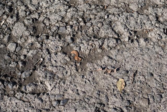 かわいたばかりの土の写真