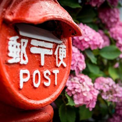 郵便ポストと紫の紫陽花の写真