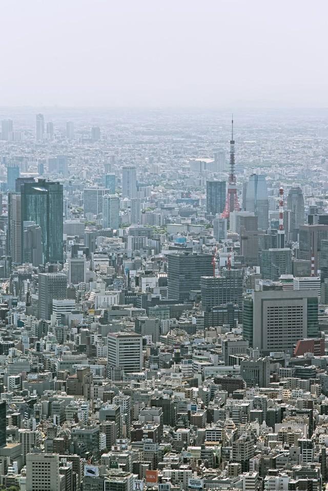東京タワーとビル群の写真
