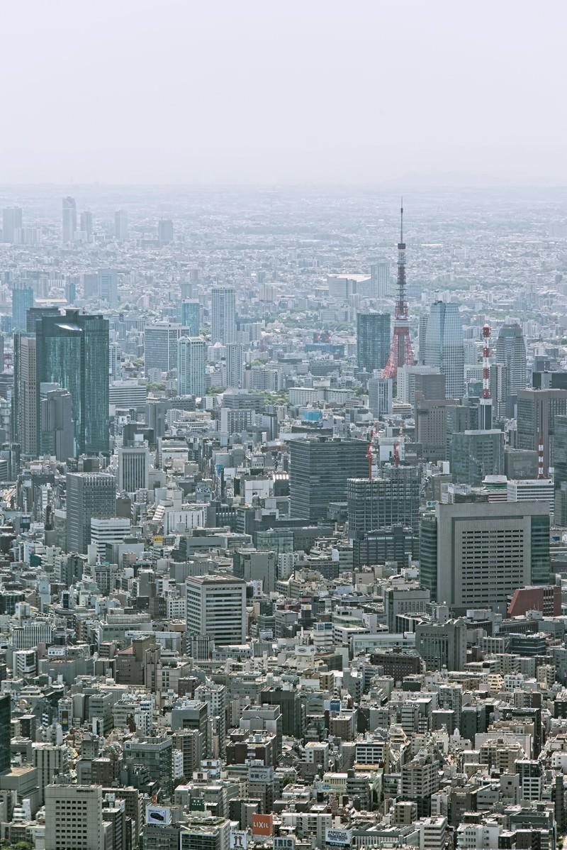 「東京タワーとビル群」の写真