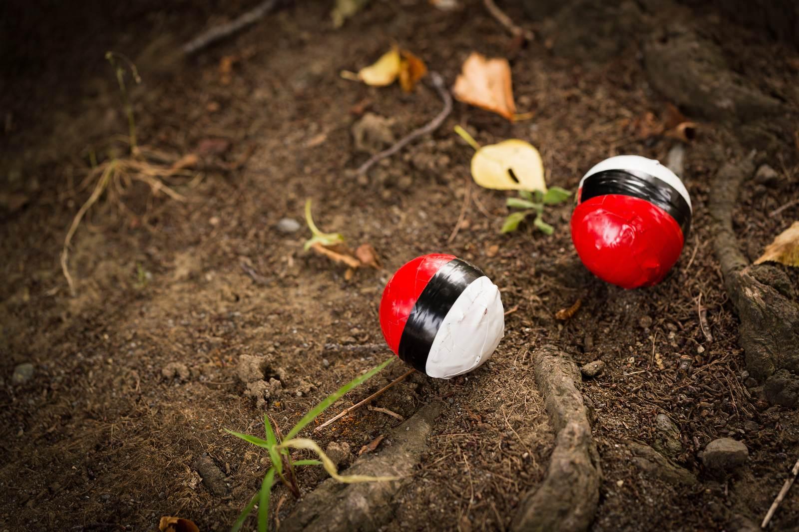 「山に生息している紅白ボール」の写真