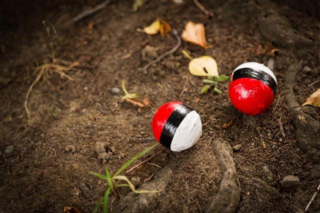 山に生息している紅白ボールの写真