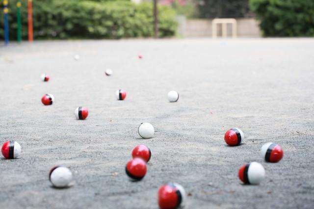 相棒を連れて紅白ボールが公園に集まってきたの写真