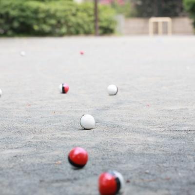 「また公園に紅白ボールが群がってきた」の写真素材