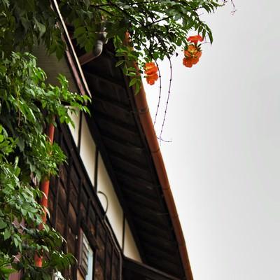 「木造のアパートと雨どい」の写真素材