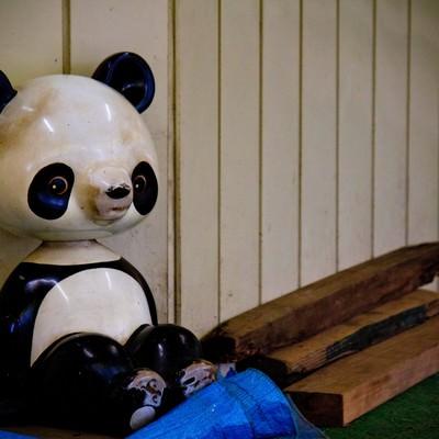 「廃材と虚ろなパンダの遊具」の写真素材
