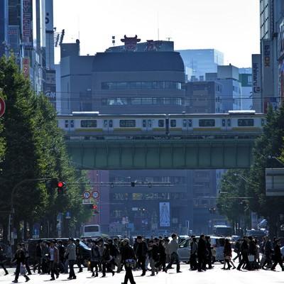 「横断中の人混み」の写真素材