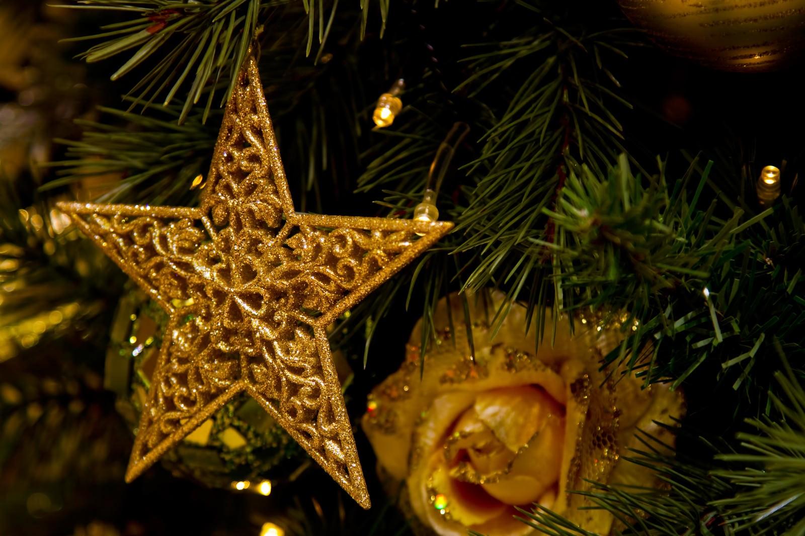 「クリスマスツリーについたスター飾り」の写真
