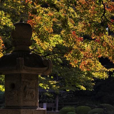 「灯篭と紅葉しはじめの庭園」の写真素材