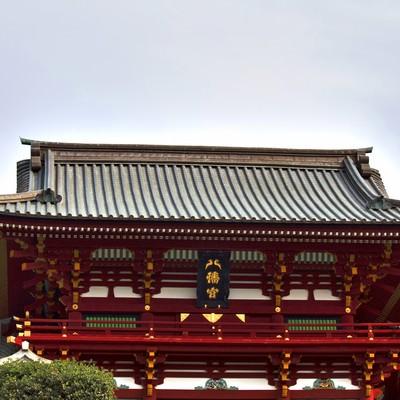 「鶴岡八幡宮」の写真素材
