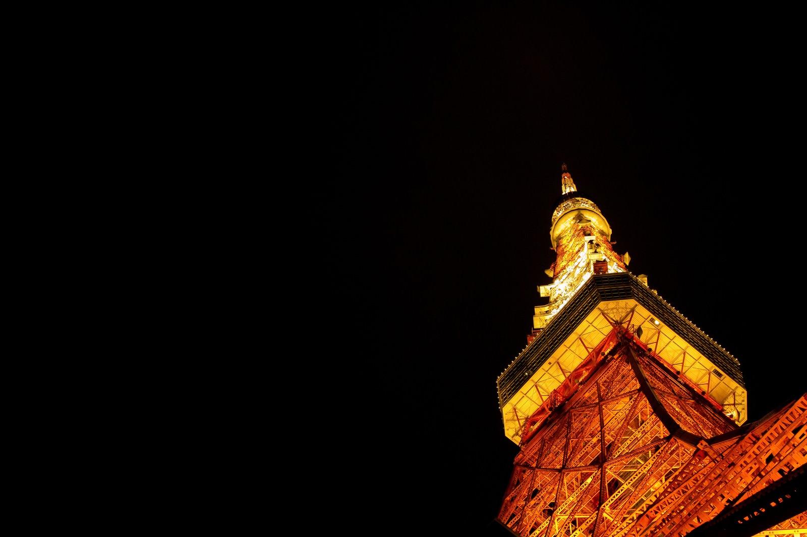 「夜の東京タワー(下から)」の写真
