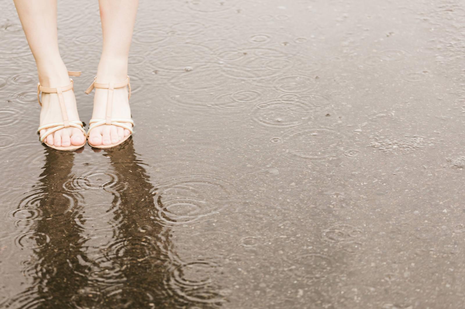 「雨で足元がびしょ濡れの女性」の写真[モデル:佐竹PP]
