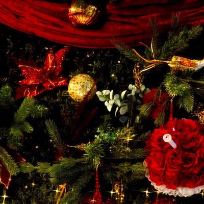 「クリスマスツリーの飾り」の写真素材