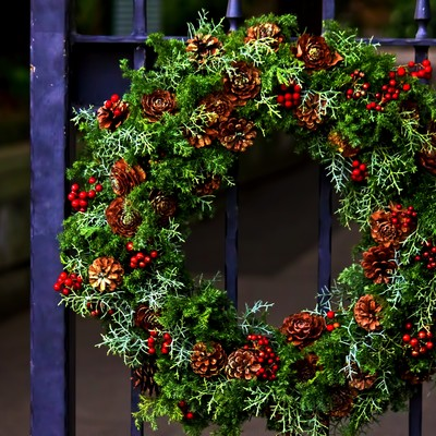 「クリスマスの輪」の写真素材