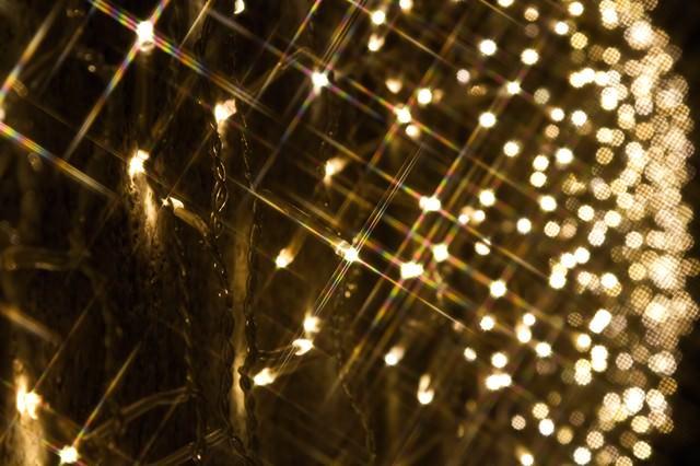 「壁一面に広がる電飾」のフリー写真素材