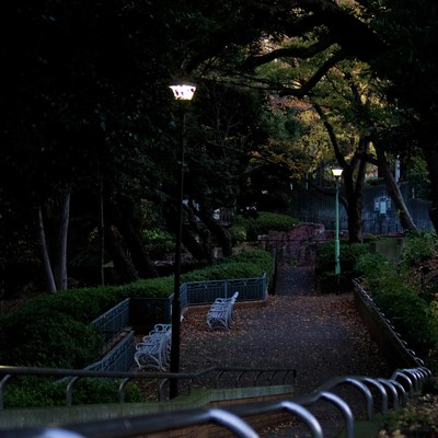 「日が暮れた公園と階段」の写真素材