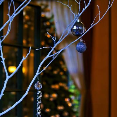 「白い飾りと奥に見えるツリー」の写真素材