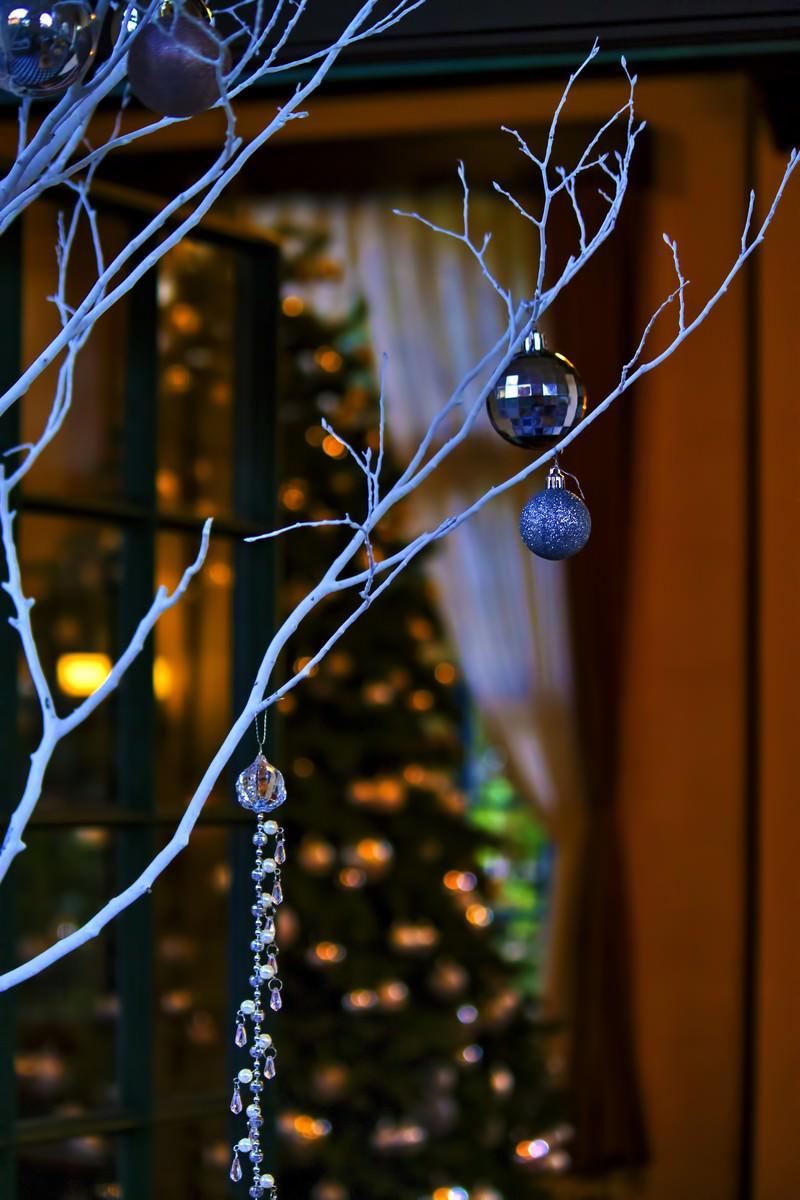 「白い飾りと奥に見えるツリー | 写真の無料素材・フリー素材 - ぱくたそ」の写真
