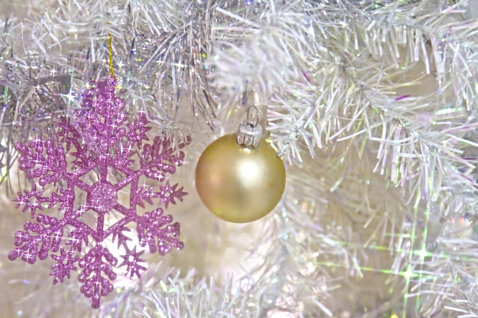「白いクリスマス飾り」の写真