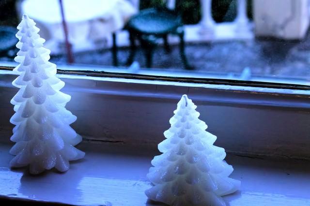 外を伺うクリスマスツリー(ろうそく)の写真