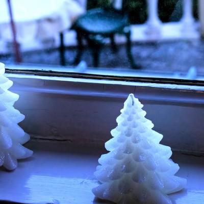 「外を伺うクリスマスツリー(ろうそく)」の写真素材