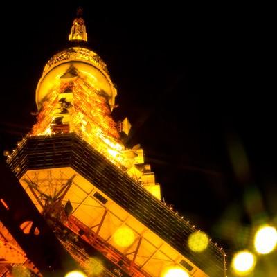 東京タワーとイルミネーションの写真