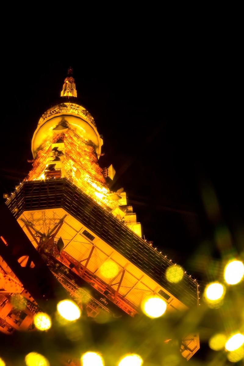 「東京タワーとイルミネーション」の写真