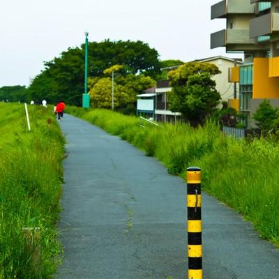 「河川敷の散歩コース」の写真素材
