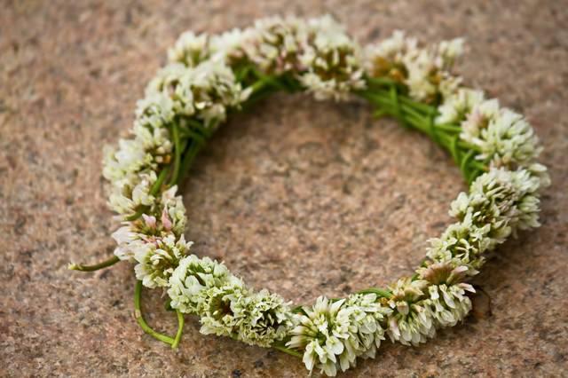 クローバーの花飾りの写真